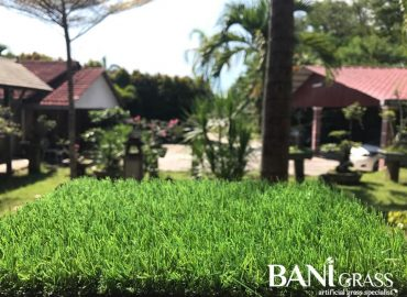 Sample Rumput Tiruan (Artificial Grass) Dari BANI Grass