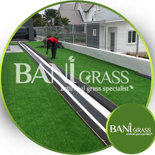 Admin BANI Grass
