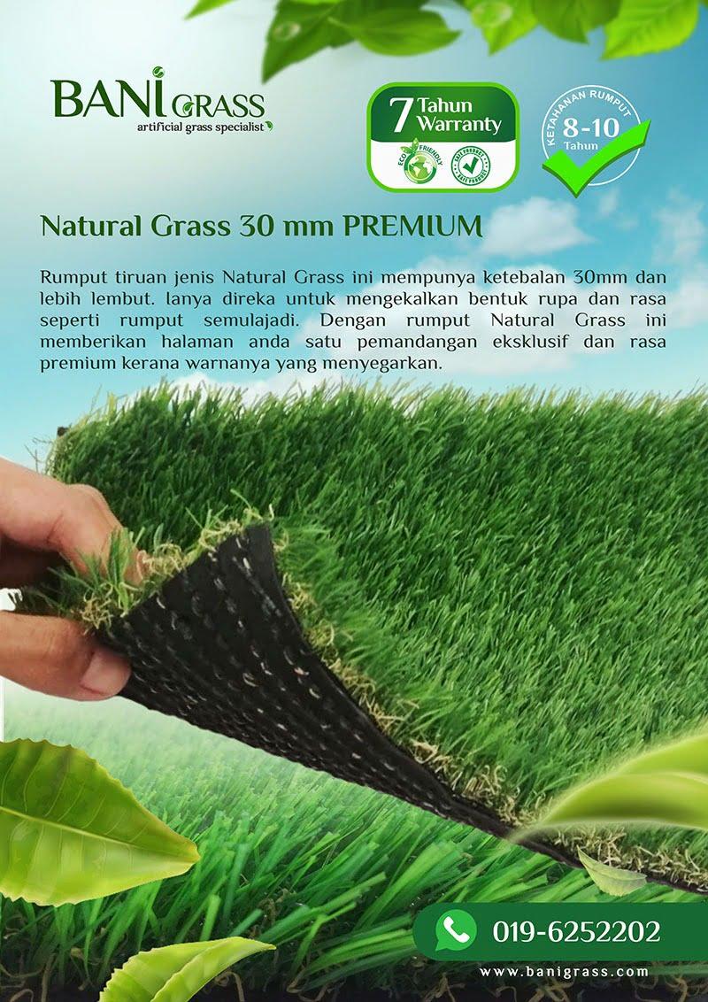 natural grass 30 mm PREMIUM